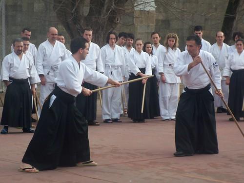 XIII Aikido Koshukai in Vigo (Spain) (6)