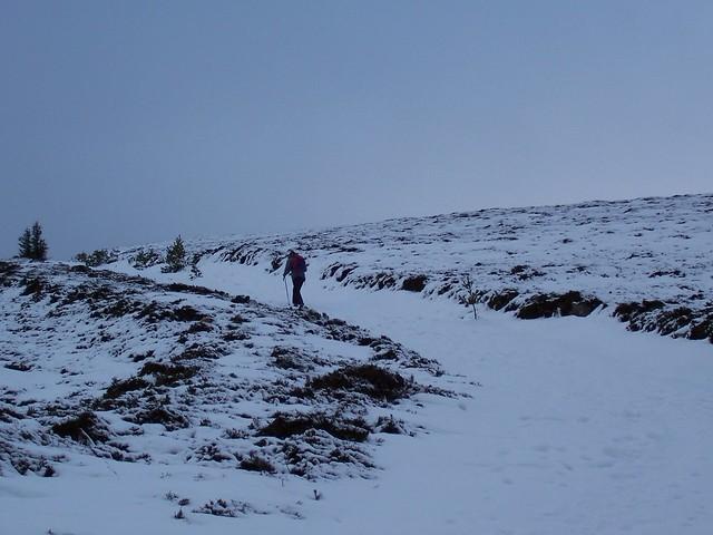 Ben Rinnes, 2755ft, Morayshire, January 2008