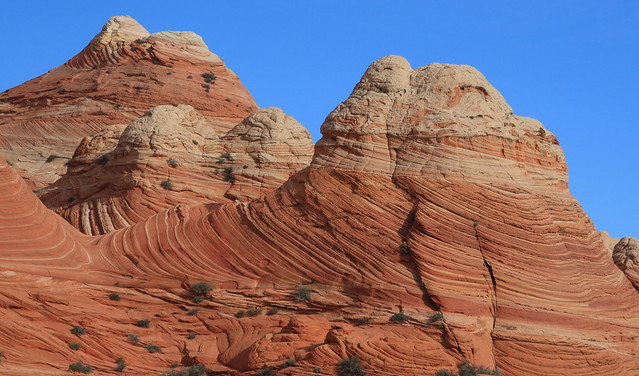 Cool natural formations between the Wire Pass trailhead and Coyote Butte North