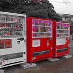 桜色 自動販売機