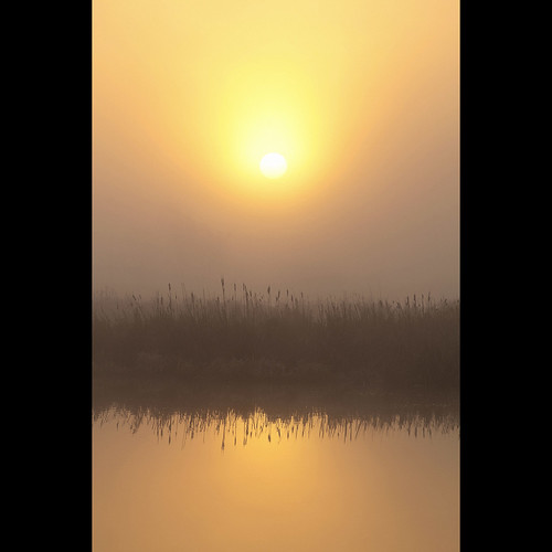 sun mist reflection sunrise dawn january surrey morningmist serpentinefen canonef70300mmf456isusm kvdl