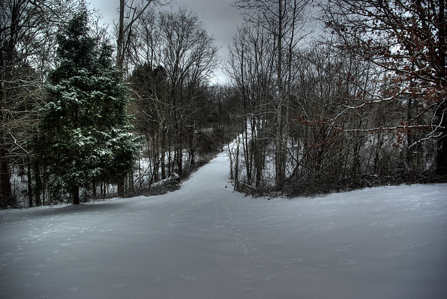 My Driveway, Overton Co, TN