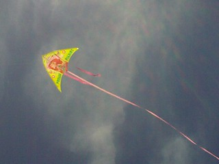 Great day to fly a kite! | by Erin *~*~*