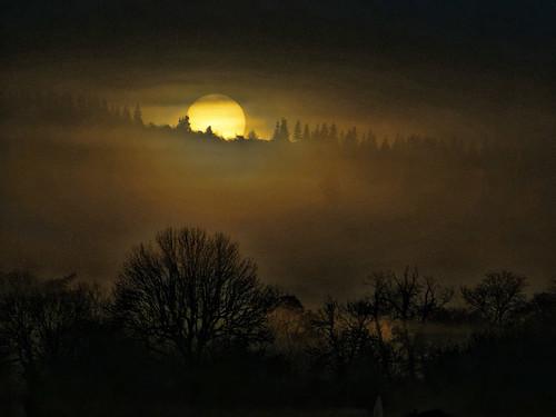 Sun at Dawn by algo