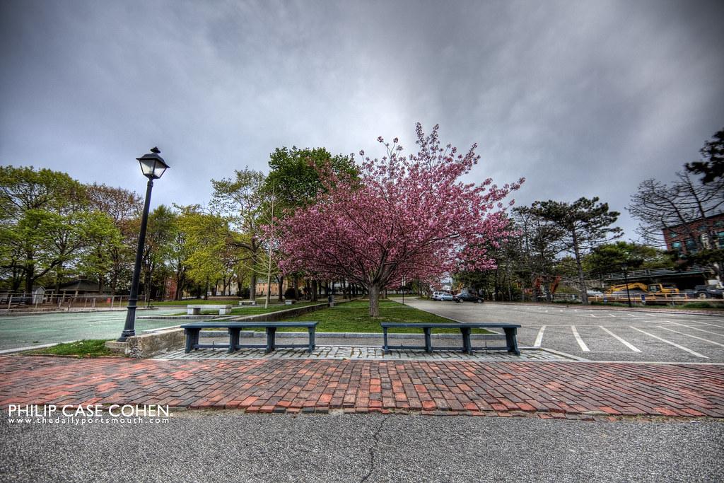 Prescott Park in Bloom by Philip Case Cohen