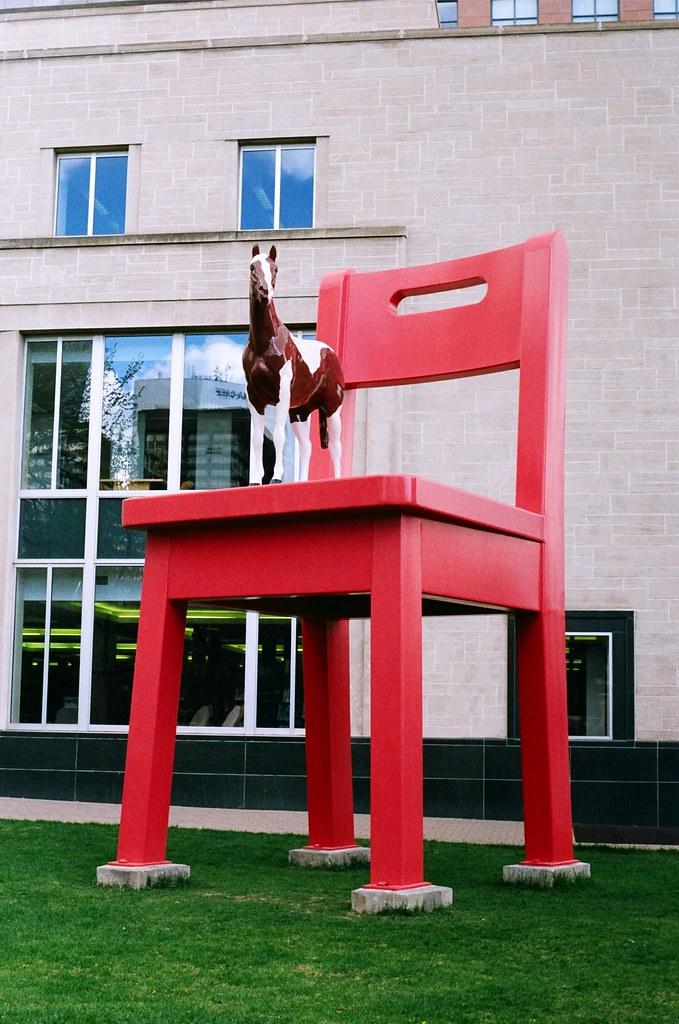 horsie on a chair