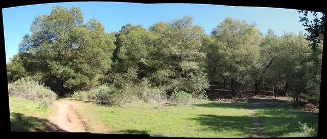 080216 autostitch tuckers grove trail 35scale 90jpegpano