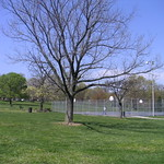 Basketball Courts, Druid Hill Park