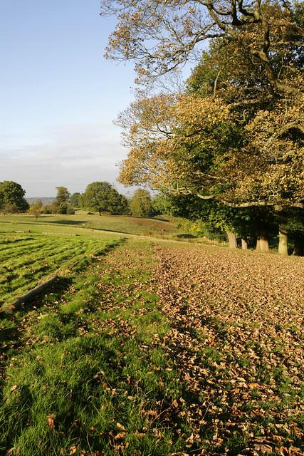 Kentish Autumn