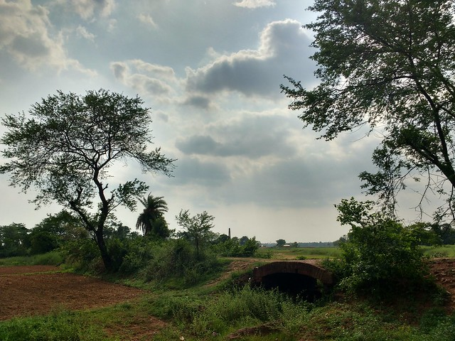 race of clouds... #smartphonephotography #casualclicks #outdoor #nature #greenery