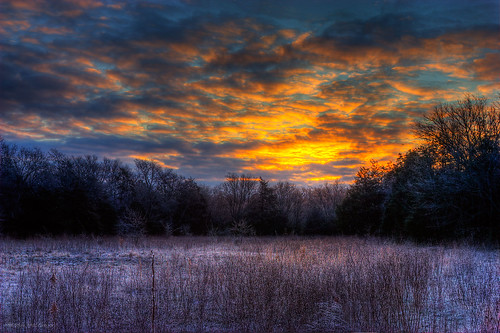 morning cold color field sunrise frost explore thechallengefactory