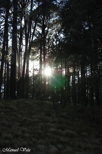 Recorrido Flickr por el Parque Nacional Izta - Popo por LAE Manuel Vela