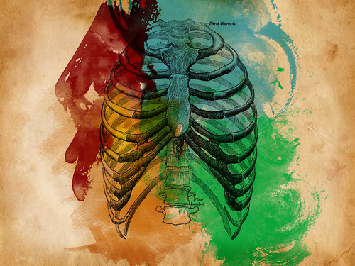 Ribcage Water Colors | by Conscience Killer