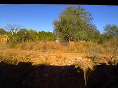 Sinaloa landscapes
