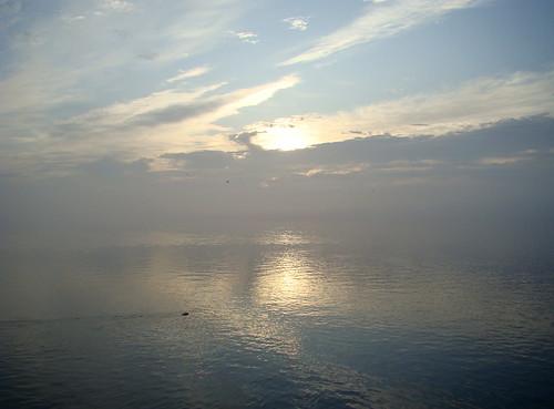 morning pink blue sky orange white mist portugal yellow tangerine clouds sunrise geotagged seagull sony peach lagoon takara ria darkclouds gaivota aveiro riadeaveiro rainbowcolours birefringence postaisilustradosdeportugal sonydsch9 ilustrarportugal ubichan geo:lat=40719242 colorfullandscapeseascape geo:lon=869864 cloudbirefringence