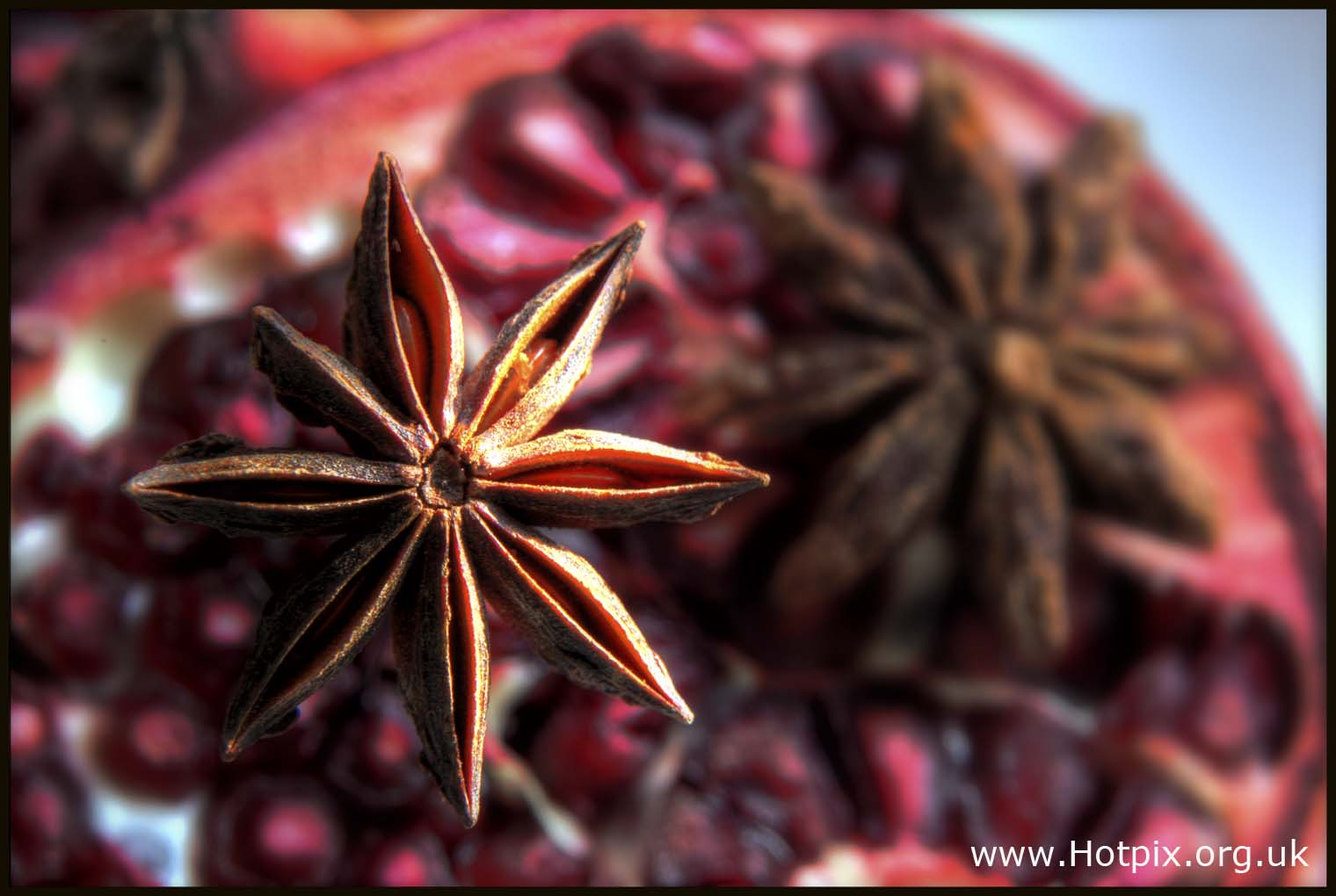 star,anise,anised,flower,dried,spice,brown,tamarind,red,12,twelve,seeds,macro,tubes,close,up,closeup,lens,small,nature,natural,food,ingredient,kitchen,tonysmith,tony,smith,hotpix,hotpix.org.uk,hotpixuk,365project,plant,bloom,stillife,stilllife,still,life,art,arty,sex,sexy