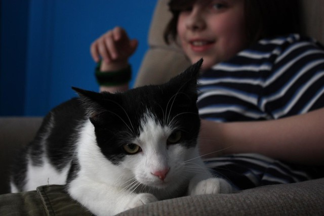 someone else's cat, with my kid
