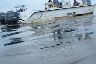 Deepwater Horizon Oil Spill – SAMPLE 19C