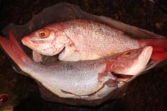 Salt baked fish | by MiraUncutBlog