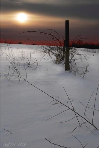 winter sunset snow newjersey vines nikon blackberry nj 1001nights ineffable gloucestercounty d80 colorphotoaward nikonflickraward elktownship 1001nightsmagiccity flickrawaqrd