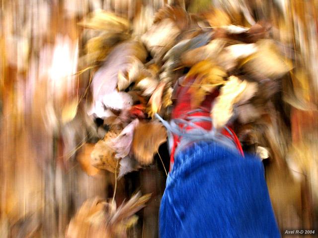 Autumn walk, 2004