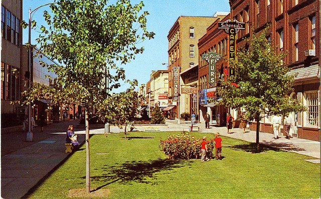 Burdick Street Pedestrian Mall Kalamazoo MI