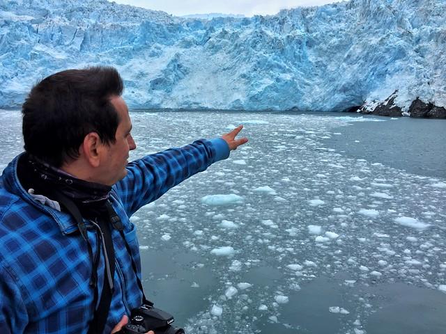 Sele ante una pared glaciar en Alaska (Estados Unidos)
