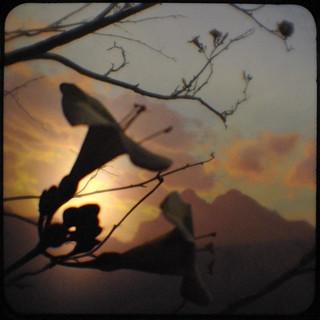 Diorama sunset
