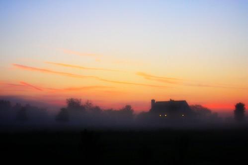 trees sky house fog sunrise country foggy