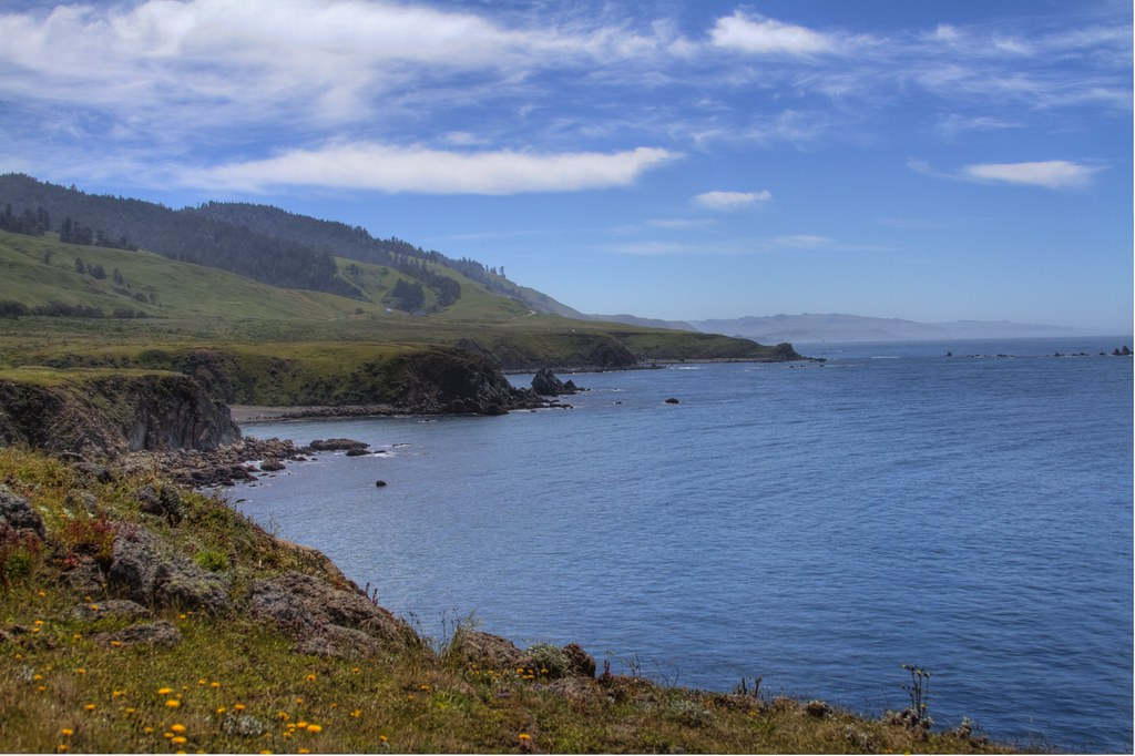 Sonoma County Coastline by Jill Clardy