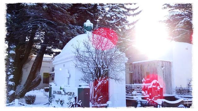 Snow Dream Punta arenas