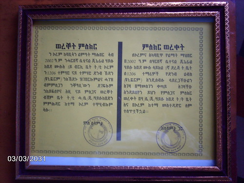 certificate | by madokorem.org