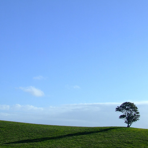 blue shadow cloud white tree green field grass silhouette clouds composition rural gum square landscape countryside spring afternoon farm daniel south horizon country hill farming rustic australia farmland minimal line hills ranges adelaide lonely sa idyll pastoral solitary minimalist cloudscape lonelytree paddock bugle wistow adelaidehills tindale hillline bugleranges danieltindale