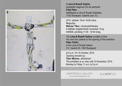 2010. október 12. 21:57 - Földi Péter kiállítása