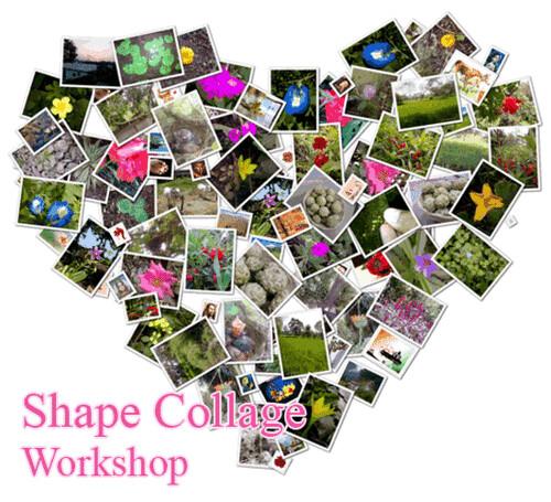 shape collage-sample-heart-images-collage-key-serial-crack… | Flickr
