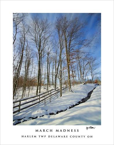 ohio snow march delawarecounty harlemtownship