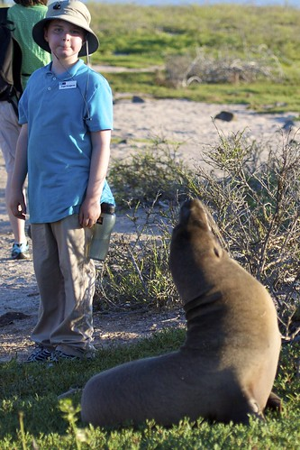 Sea Lion Checks Out Roger | by bbum