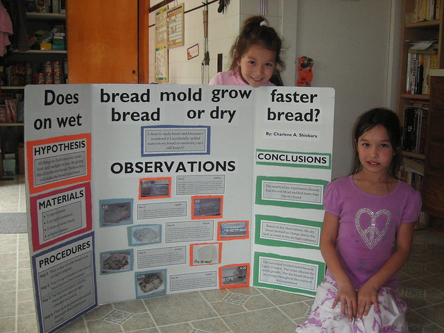 Charlie's 4th Grade Science Project