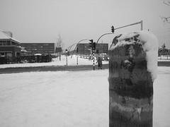 roman milestone in snow