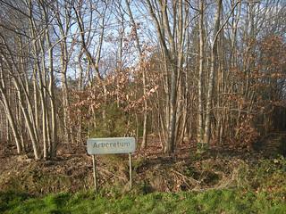 Arboretum, Koekelare | by Erf-goed.be