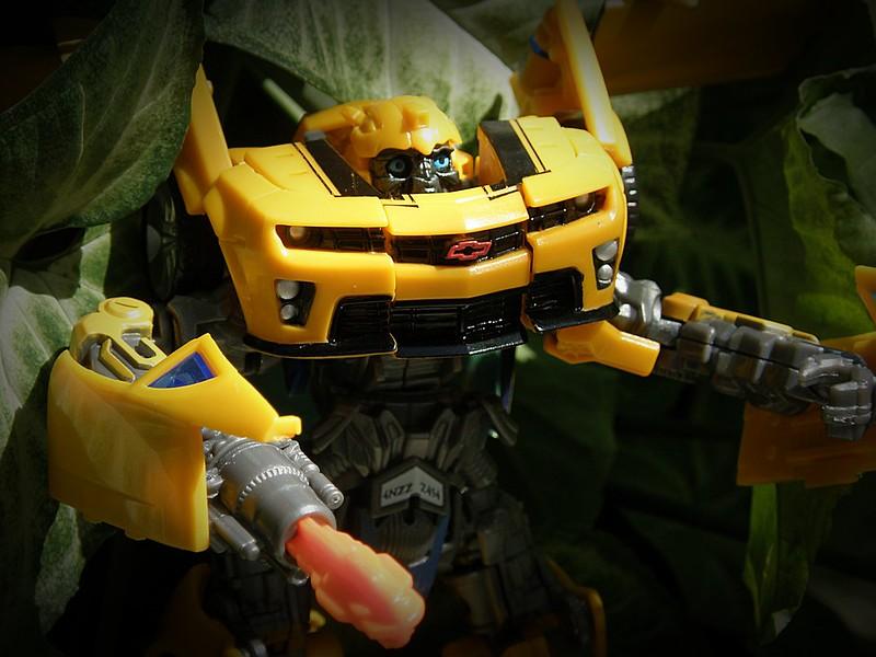 TRANSFORM Bumblebee