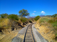Behind the Chepe train