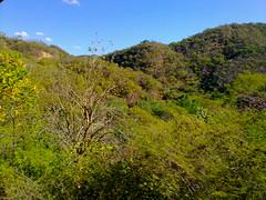 Sinaloa Sierra landscape