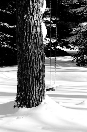 Waiting for Spring | by Chris Nauman Photography