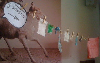 Bioplastic on the Clothesline
