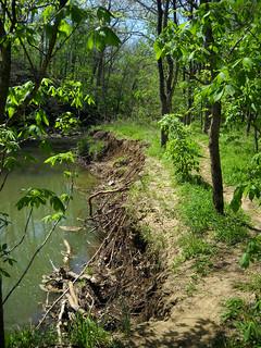 Rock Bridge Trail Damage | by aar0on