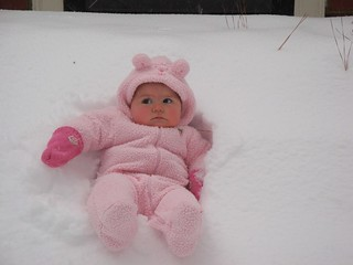 Snow Bunny Emory   by Keith A Burns