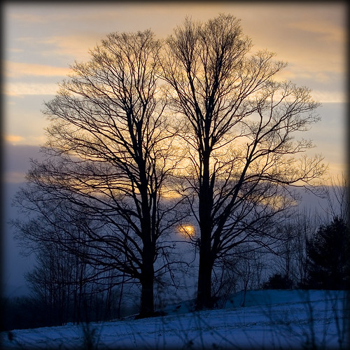 winter sunset sky snow tree nature field landscape vermont