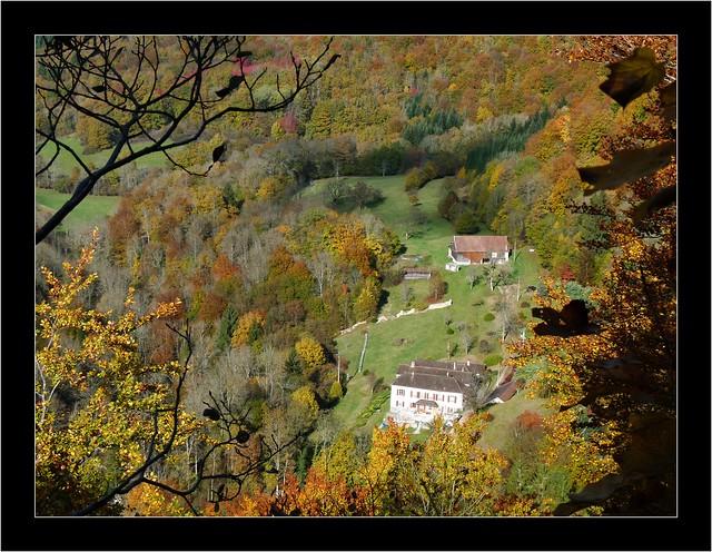 couleur d'automne norvaux