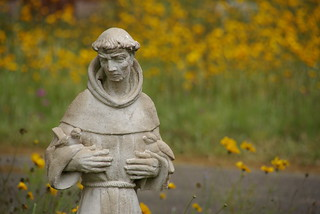 St. Francis of Assisi   by sarowen